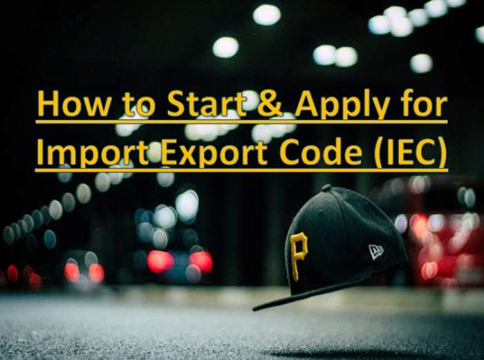 How to Start an Import Export Business in India & Its Procedure